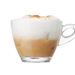 Émulsionneur de lait Hot & Cold 10
