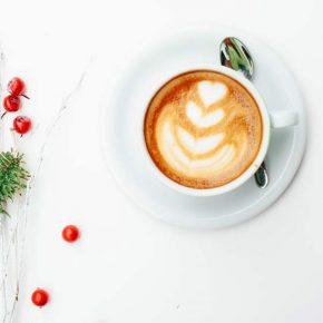 """Café Esperanza """"Café d'hiver"""" Fairtrade, en grains, 250g 9"""